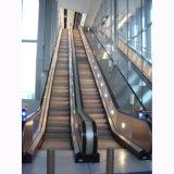 Escalera móvil al aire libre de interior de la caminata móvil del fabricante de China