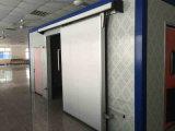 Portello bianco della cella frigorifera con il certificato del CE
