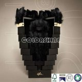 Nuevo rectángulo de regalo del embalaje de Champán del negro del diseño