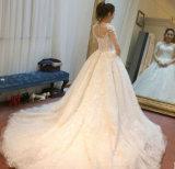 Мантии шарика 2017 платье венчания новой втулок прибытия СРЕДНЕЙ супоросое (Dream-100029)