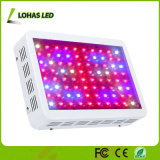 300W 600W 900W 1000W 가득 차있는 스펙트럼 LED는 가벼운 위원회를 증가한다