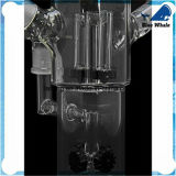Cachimba de cristal de Shisha del nuevo diseño Bw123 2015 para fumar