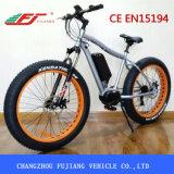 48V 500W 바닷가 함 전기 자전거/뚱뚱한 Ebike
