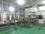 Großer Mangofrucht-Saft-Pflanzenmaschinen-Hersteller in China