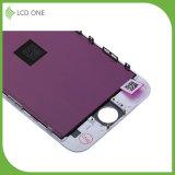 Экран LCD замены конкурентоспособной цены на телефон 6