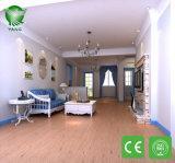 防水ホームのための背部プラスチック床のマットを乾燥しなさい