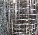 강한 질에 의하여 용접되는 철망사 (입히는 Galvanized/PVC)