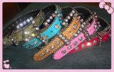 Bb Simon Collar de cachorro de luxo, Crystal Pet Collar