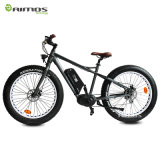 Bici elettrica urbana della batteria dell'elemento portante della lunga autonomia