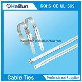Neue Produktions-Strichleiter-einzelner Widerhaken-Verschluss-Edelstahl-Kabelbinder
