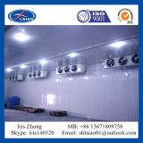 Kühlraum-Fertigung von Shanghai (abkühlender Raum)
