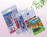 Et coloré de fournisseur chinois sachet en plastique scellé par côté clair