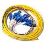 De Vlecht van de Bundel van de multi-Vezels van de Vlechten van de Vezel van LC/St/LC/FC 12colors