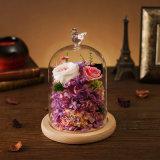 Цветок 100% естественный для подарка дня Valentine