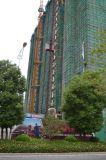 Кран башни высокого качества конструкции Qtz100 (TC6513)