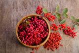 Baya Himalayan china de Wolfberry Goji de las bayas de Goji del níspero