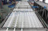10tonは魚の冷却のための冷却のアイスキャンディー機械を指示する