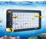 CREE 55X3w LED luz del acuario para Marine Organismo