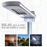 luz de calle solar de 10W LED para el hogar del jardín que enciende la lámpara al aire libre del camino con precio bajo