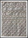 Tela do laço do bordado do laço do ilhó do algodão da tela de algodão