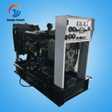 12kw Weifang Ricardo Generator-Set mit geöffnetem Typen