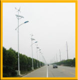 Lumière hybride Vent-Solaire économiseuse d'énergie