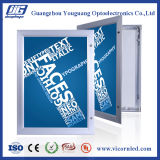 최신: 방수 옥외 LED 가벼운 상자 YGW42