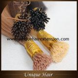 As melhores extensões do cabelo da queratina da fusão de Remy da qualidade