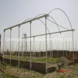 High Quality Professional EU Type Greenhouse