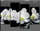 Het in het groot Goedkope Grote Af:drukken van het Canvas van de Orchideeën van de Kunst van de Muur van de Grootte Mooie Witte