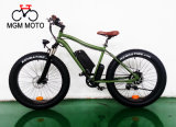 Vélo électrique 500W de grosse neige de pneu pour l'homme