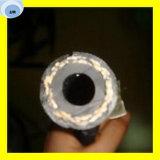 Mangueira hidráulica trançada da fibra superior do aço R3 dois de alta elasticidade do SAE 100 da qualidade (2T/B)
