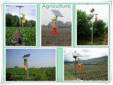 Solarinsekt-Mörder-Lampe für Landwirtschafts-Insekt-Plage-Moskito-Fliegen-Schabe-Motte