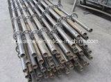 يغلفن فولاذ قابل للتعديل [رينغلوك] نظامة سقالة