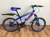 Bicicleta Sr-Kb138 de 2017 boa crianças do projeto com freio de disco e suspensão da forquilha