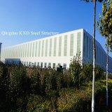 Almacén prefabricado/taller de la fabricación ligera de la estructura de acero