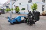 Spülpumpe Bw160, Bw320, Zylinder-Spülpumpe Bw-250 einzelne