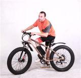 36V 350Wモーター雪のEbikeの脂肪質のタイヤの電気自転車