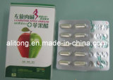 Nature pur L-Carnitine Apple Vinegar Slimming Capsules pour Body Reduce Weight