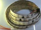 방수 화소 SMD5050 IC Ws2812b를 가진 유연한 LED 지구