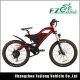 2016년 산 전기 자전거 500W E 자전거