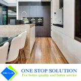 Impiallacciatura chiara e mobilia bianca del Governo della casa di rivestimento di colore (ZY 1173)