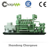 無声タイプの大きいエンジンを搭載する250kVA天燃ガスの発電機セット