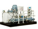 Compressor de CNG para o compressor de alta pressão da estação da filha (Único-Cilindro)