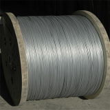 Steel galvanisé Wire pour Fence Mesh