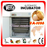 Natal em Sale Model Quente-Selling Digital Fully Automatic Chicken Egg Incubator para Eggs 1000