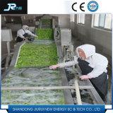Bolha do legume com folhas e máquina de lavar de alta pressão