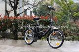 Bike 20 дюймов миниый складной электрический с безщеточной чернотой Assist мотора