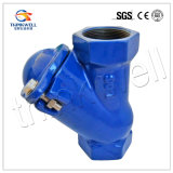 Ball Check Valve with Pn16 Screwed End