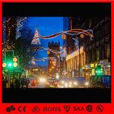 Luz al aire libre de la decoración de los horizontes del día de fiesta de la decoración LED de la Navidad de la calle